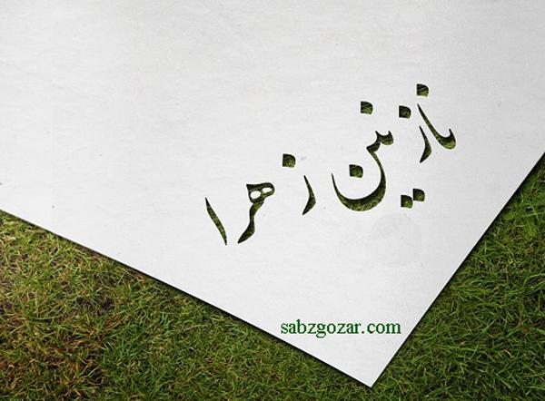 عکس نوشته اسم نازنین زهرا